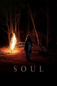 Soul film poster