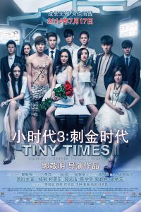 Tiny Times 3 film poster