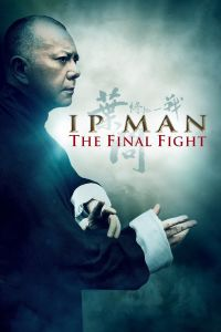 Ip Man: The Final Fight film poster