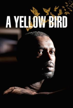 A Yellow Bird film poster