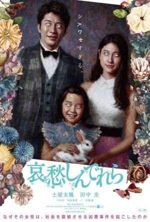 The Cinderella Addiction film poster
