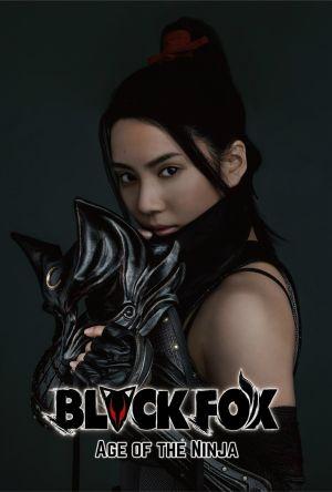 Black Fox: Age of the Ninja film poster
