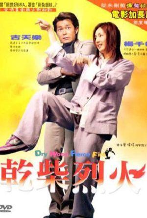 Dry Wood, Fierce Fire film poster
