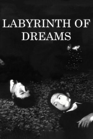 Labyrinth of Dreams film poster