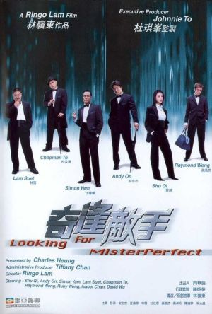 Looking for Mr. Perfect film poster