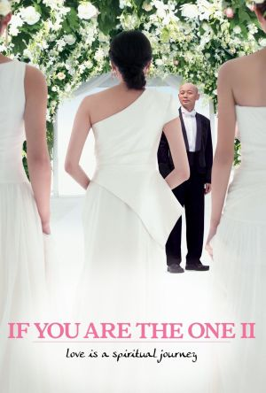 If You Are the One 2 film poster