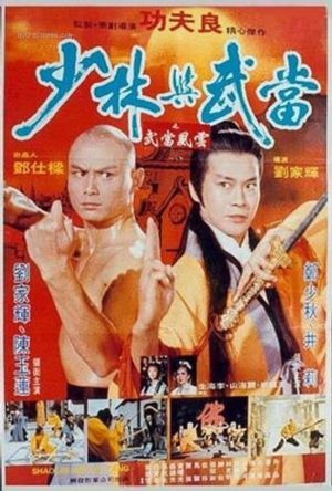 Shaolin & Wu Tang film poster
