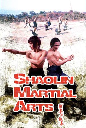 Shaolin Martial Arts film poster