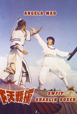 Swift Shaolin Boxer film poster