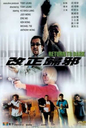 Return to Dark film poster
