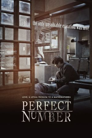 Perfect Number film poster