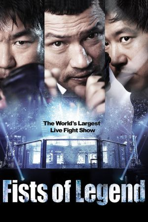 Fists of Legend film poster