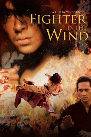 Fighter In The Wind film poster
