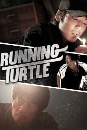 Running Turtle film poster