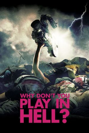 Why Don't You Play in Hell? film poster