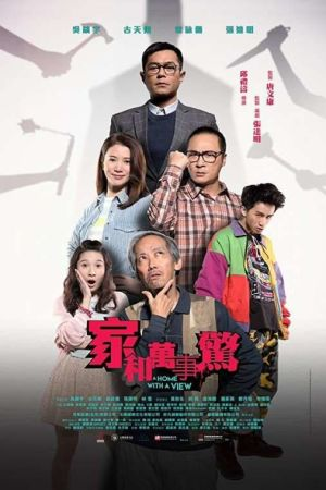 A Home with a View film poster