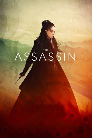 The Assassin film poster