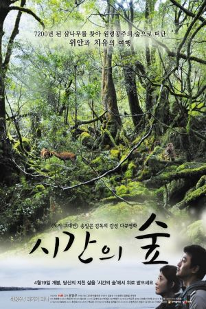 Forest of Time film poster