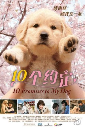 10 Promises to My Dog film poster