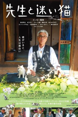 Teacher and Stray Cat film poster