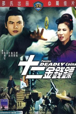 Twelve Deadly Coins film poster