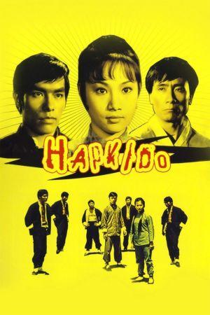 Hapkido film poster