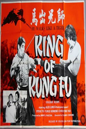 King of Kung Fu film poster