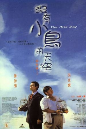 The Pale Sky film poster