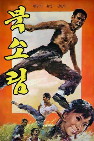 Tiger of Northland film poster