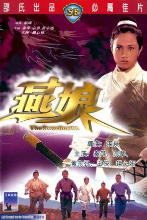 The Swordmates film poster