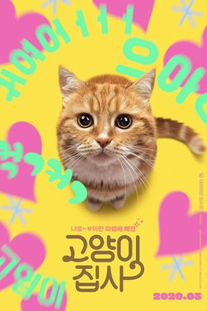 Our Cat film poster