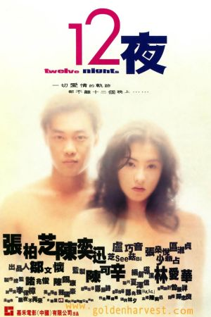 Twelve Nights film poster