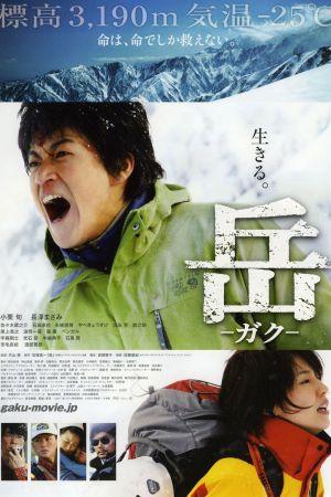 Peak: The Rescuers film poster