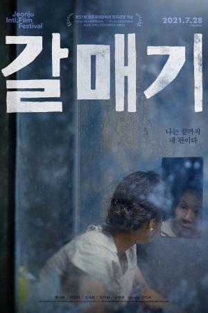 Gull film poster