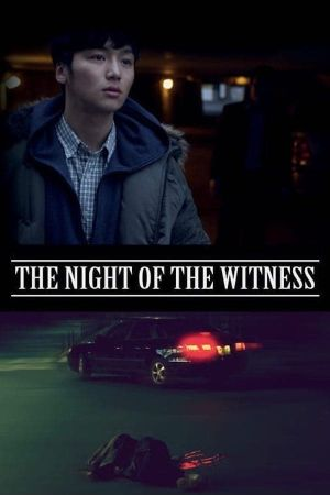 The Night of the Witness film poster