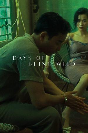Days of Being Wild film poster