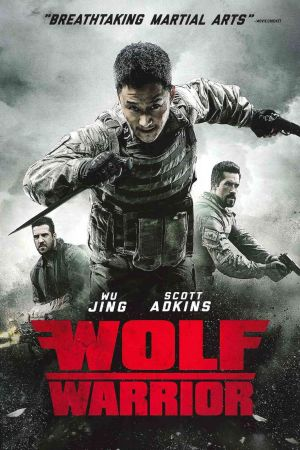 Wolf Warrior 3 film poster
