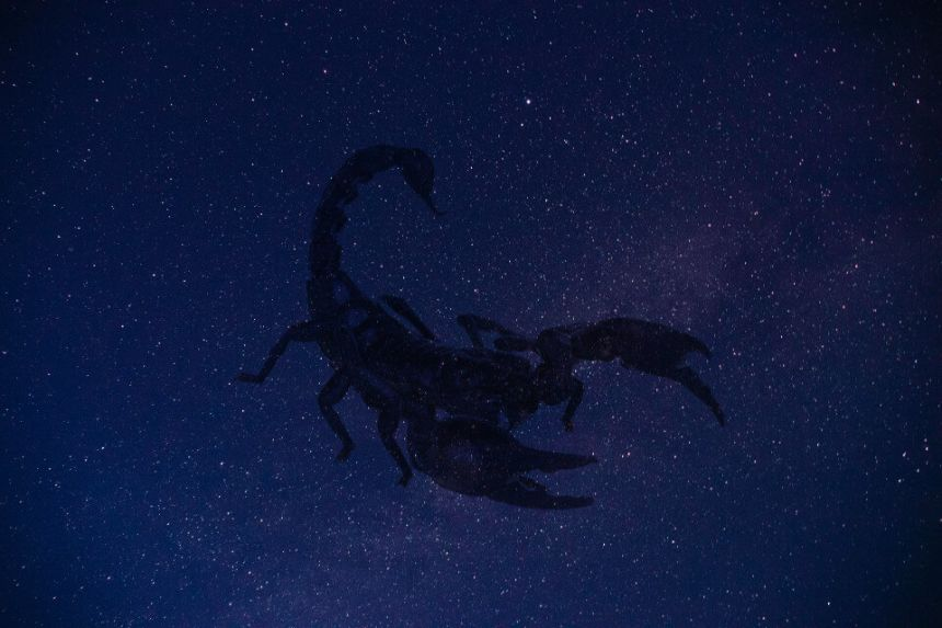 What is Scorpio's Ruling Planet and its Meaning in Astrology?