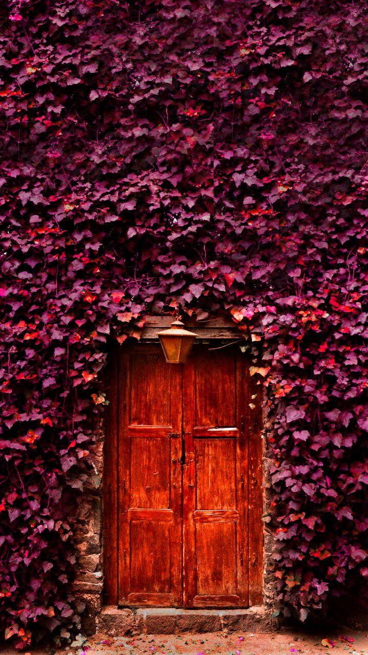 Mexico City Doorway
