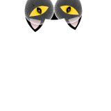 mel duARTE profile image