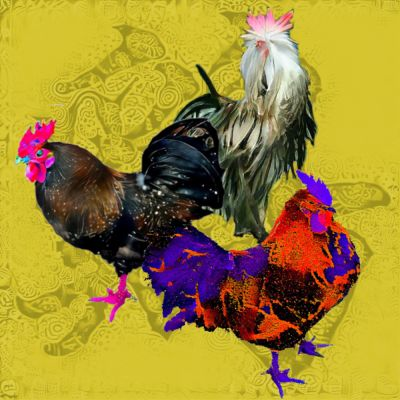 Rooster - by Sparrow