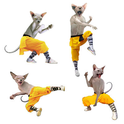 Shaolin Sphynx