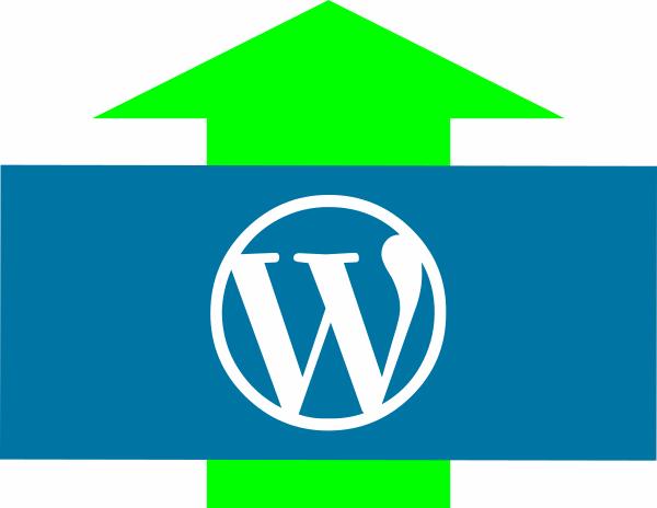 WordPress Çekirdek Sürümünü Elle Yükseltme