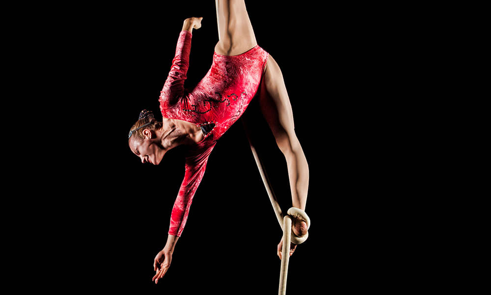Cirque Dreams Holiday_Things to do for the holidays in Atlanta.jpg