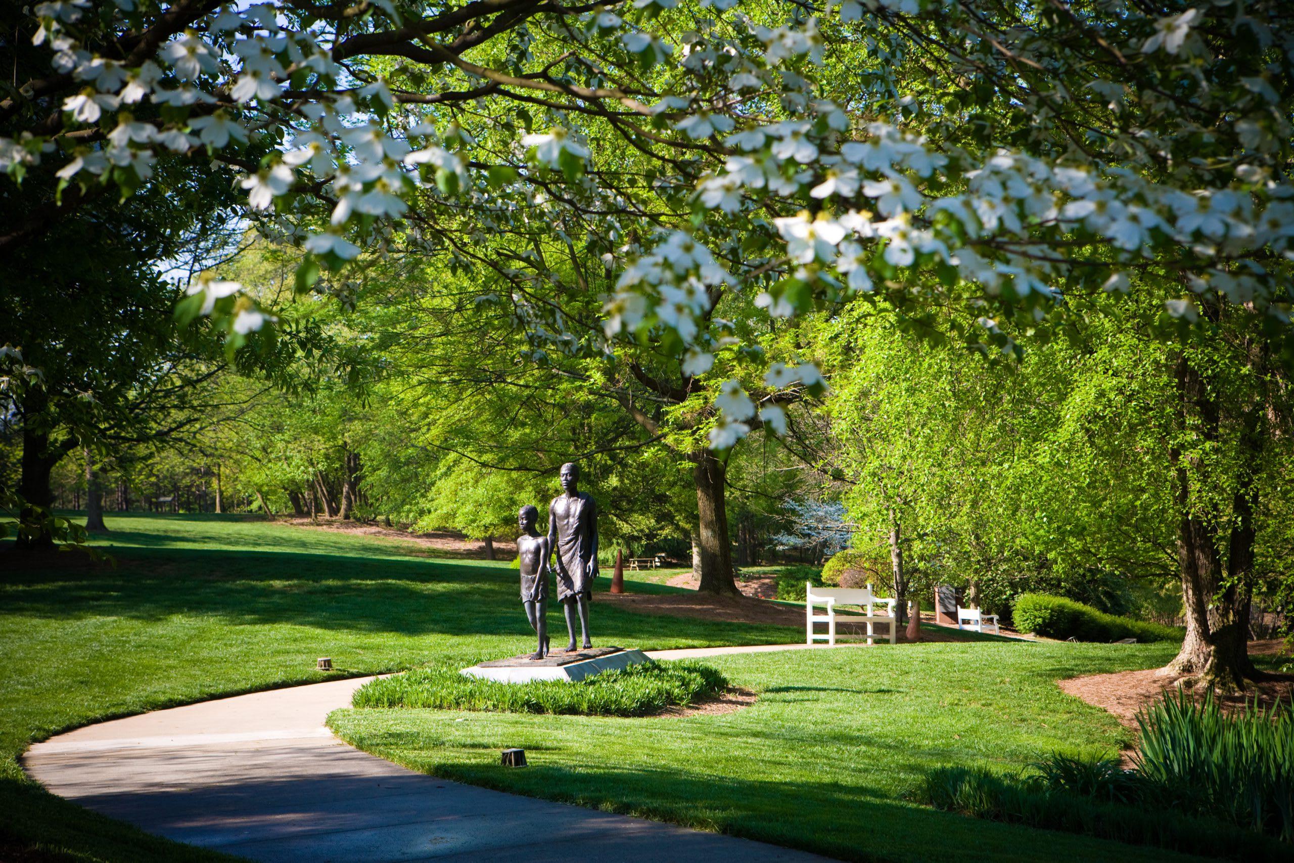 Carter Center Park