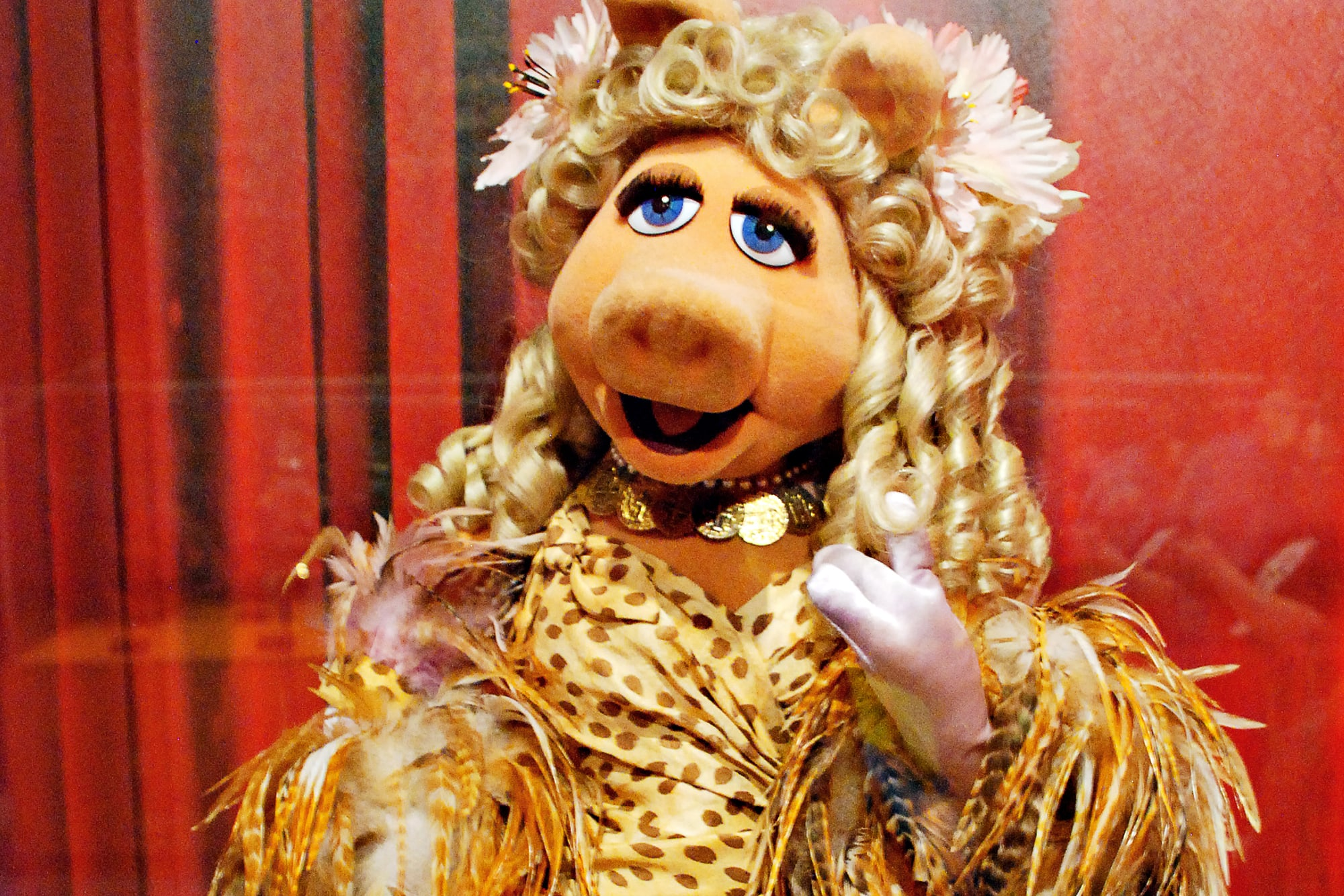 Miss Piggy sits behind glass looking glamorous, as part of the Jim Henson Collection at Worlds of Puppetry Museum in Atlanta, Georgia.