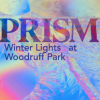 PRISM: Winter Lights at Woodruff Park