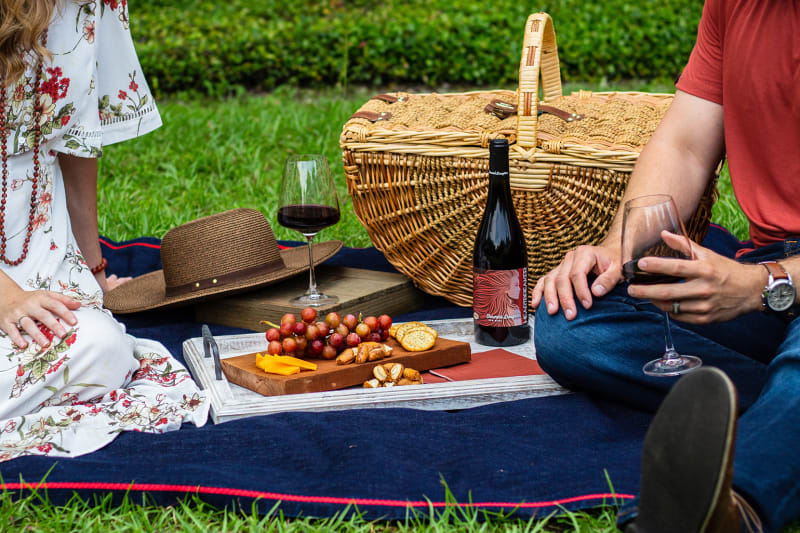 A man and woman share a romantic picnic in their backyard, complete with wine, grapes, cheese and crackers.