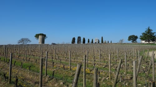 A trip to Bordeaux : wine, beach and history