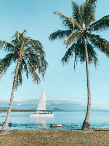 Port Douglas views